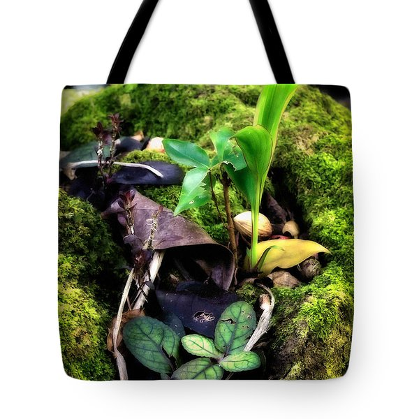 Tote Bag featuring the photograph Miniature Garden by Jim Thompson