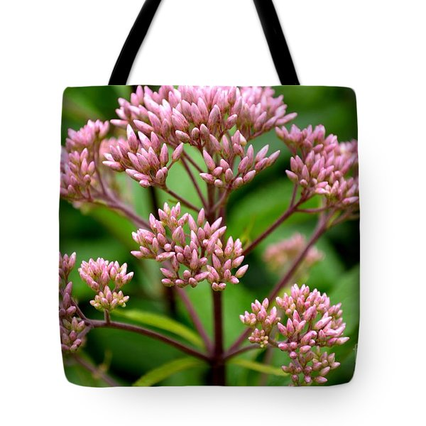 Tote Bag featuring the photograph Miniature Purple Cones by Scott Lyons