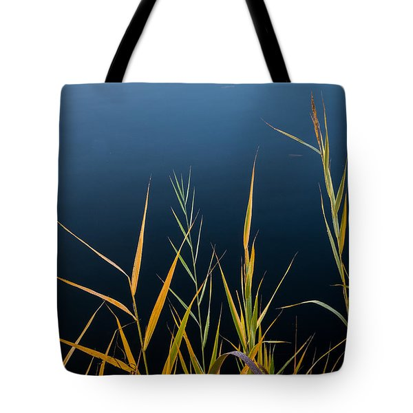Tote Bag featuring the photograph Minimalist Me by Glenn DiPaola
