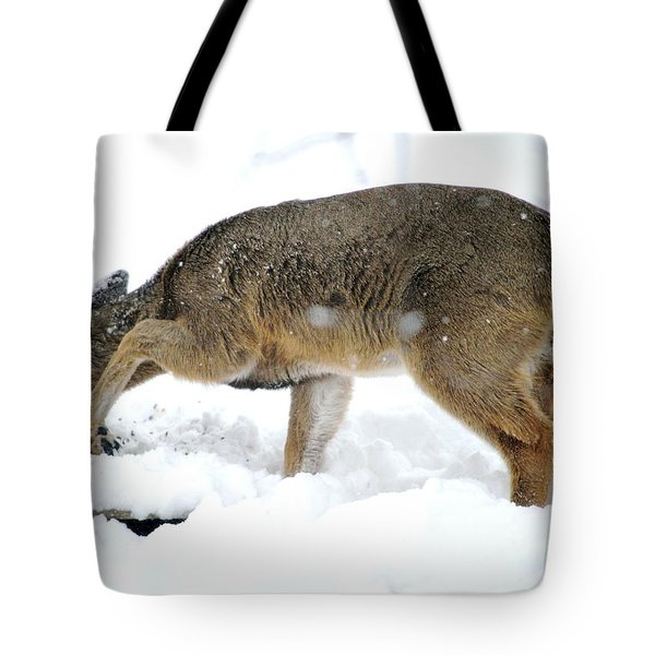 Tote Bag featuring the photograph Minnesota Winter Struggles by Dacia Doroff