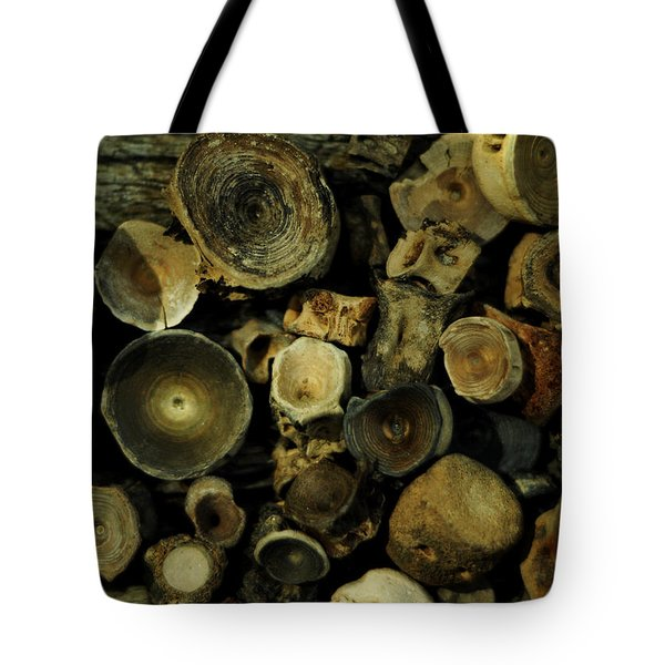 Miocene Fossil Vertebrae Collection Tote Bag
