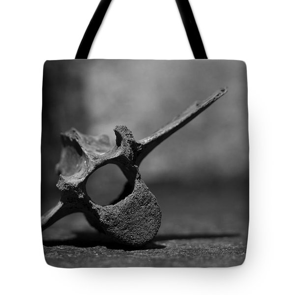 Tote Bag featuring the photograph Miocene Fossil Whale Vertebra by Rebecca Sherman