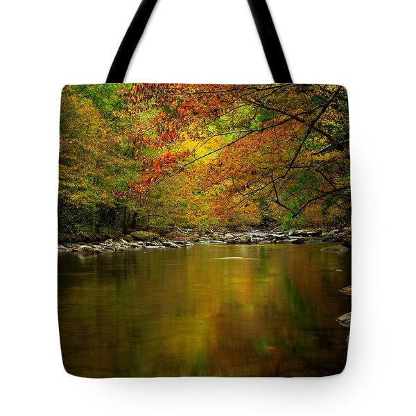 Tote Bag featuring the photograph Mirror Fall Stream In The Mountains by Debbie Green
