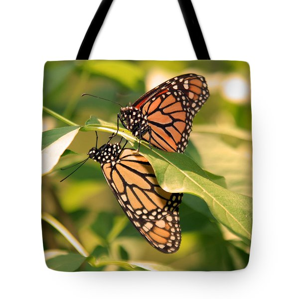 Tote Bag featuring the photograph Mirror Image by Karen Silvestri