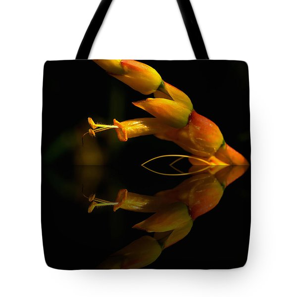 Mirror Image Tote Bag