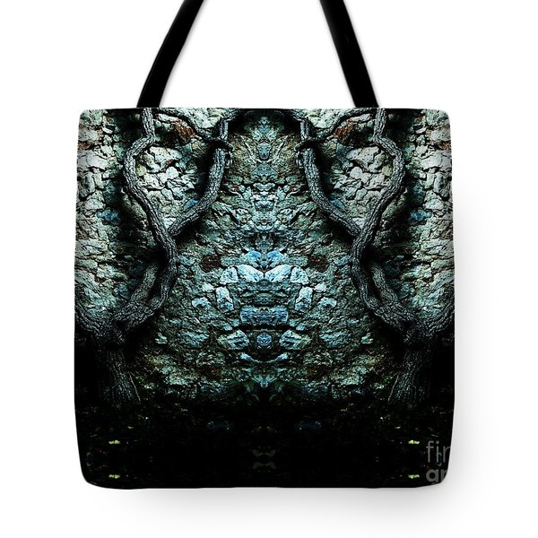 Mirror Mirror On The Wall Tote Bag by Andy Prendy