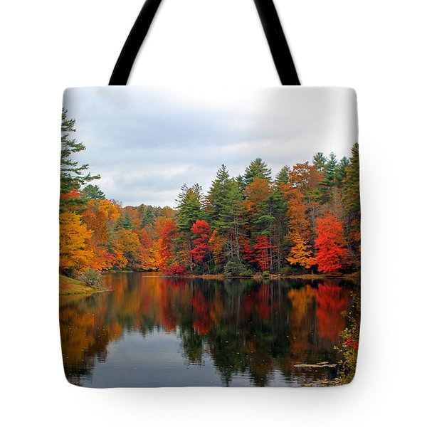 Mirrored Lake Tote Bag