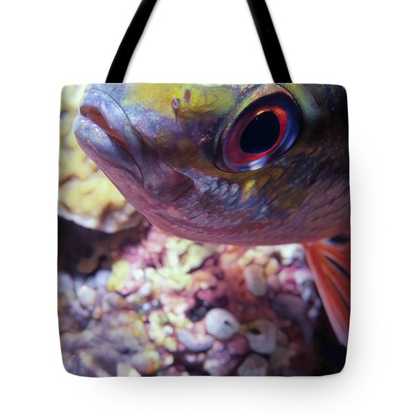 Miscellaneous Fish 5 Tote Bag by Dawn Eshelman