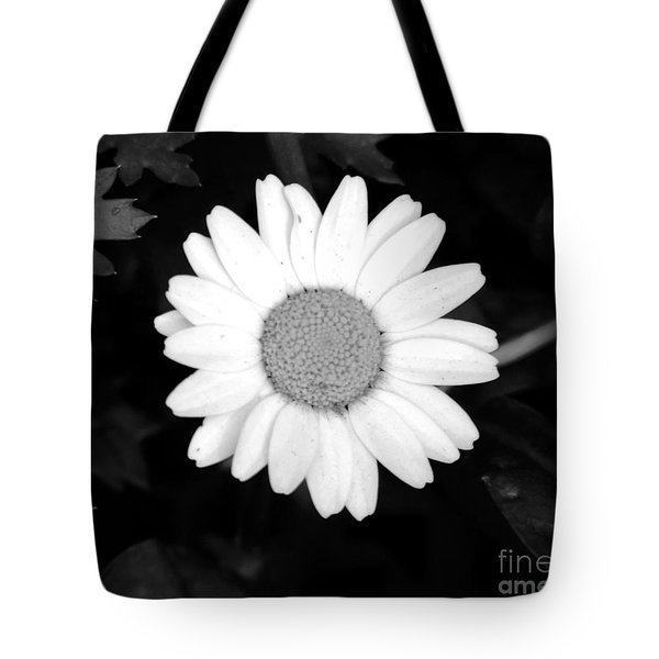 Miss Daisy Tote Bag by Andrea Anderegg