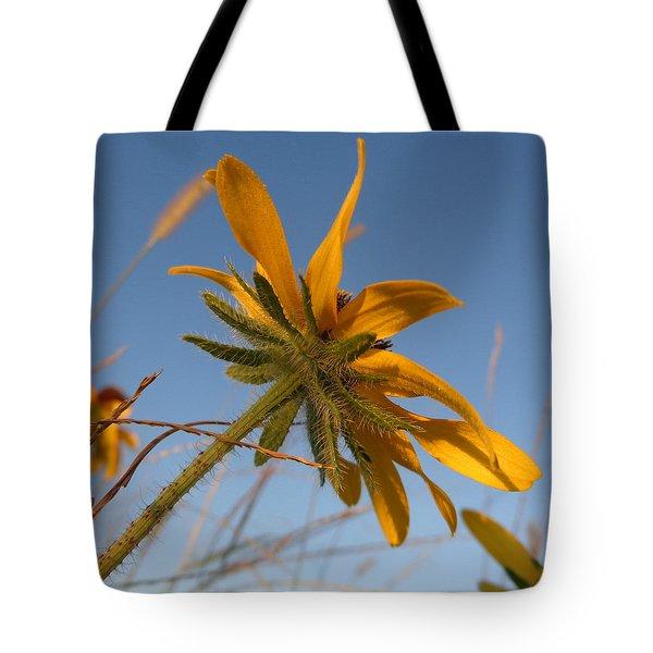 Tote Bag featuring the photograph Miss Daisy by Joseph Skompski