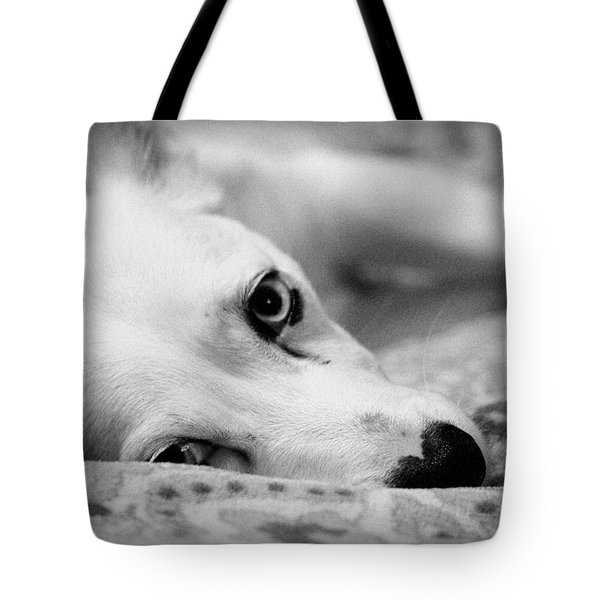 Miss Donut  Tote Bag by Faith Williams