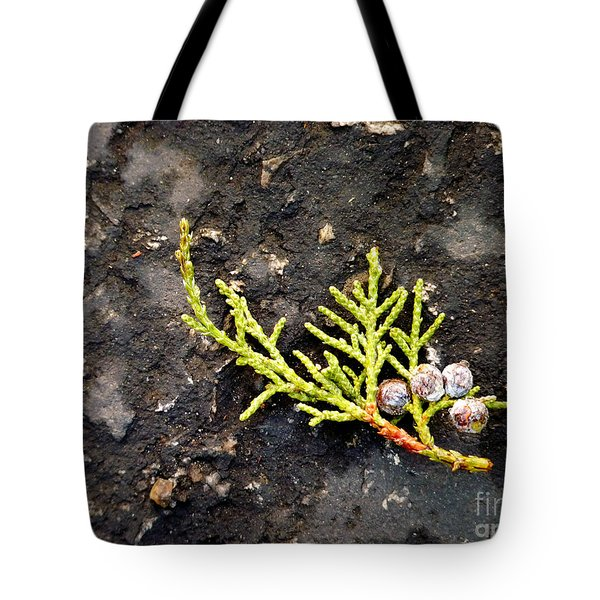 Tote Bag featuring the photograph Missing Christmas by Meghan at FireBonnet Art