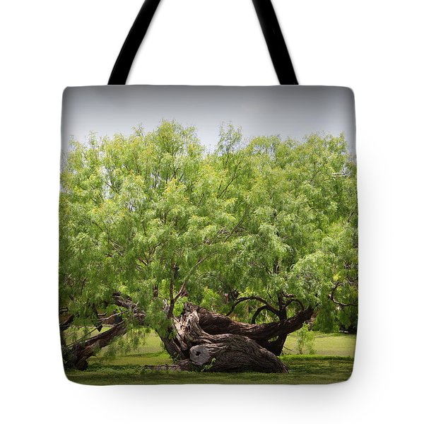 Mission Espada - Tree Tote Bag