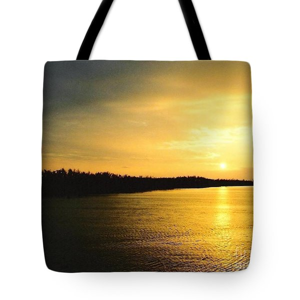 Tote Bag featuring the photograph Sunrise Over The Mississippi River Post Hurricane Katrina Chalmette Louisiana Usa by Michael Hoard