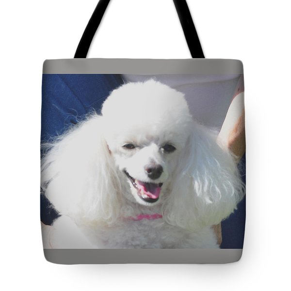 Missy White Poodle Tote Bag by Jay Milo