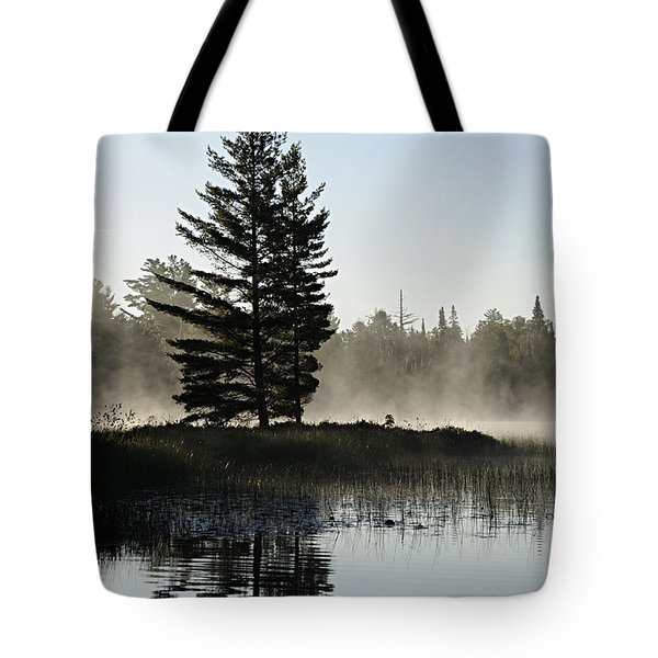 Mist And Silhouette Tote Bag by Larry Ricker
