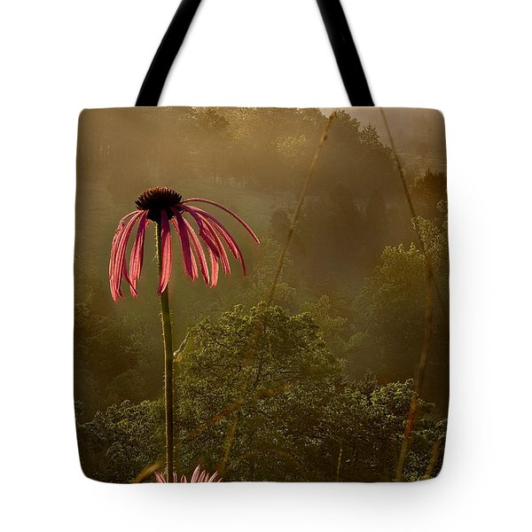 Mist On The Glade Tote Bag