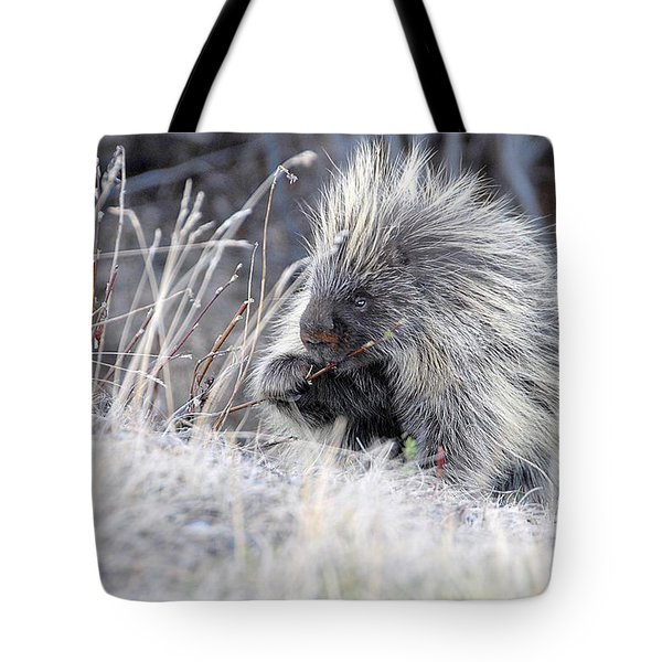 Tote Bag featuring the photograph Mister Porcupine - Denali Alaska by Dyle   Warren