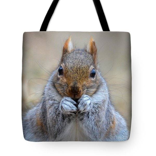 Mister Whiskers Tote Bag by Amy Porter