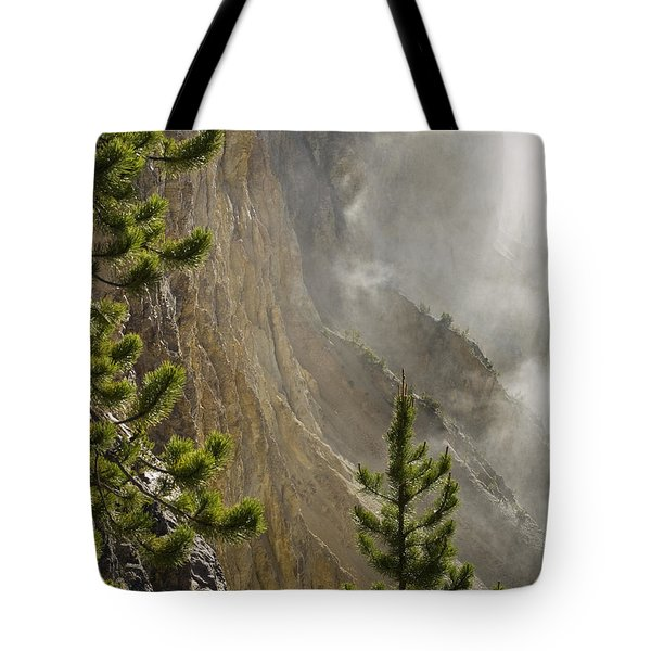 Misty Canyon  Tote Bag