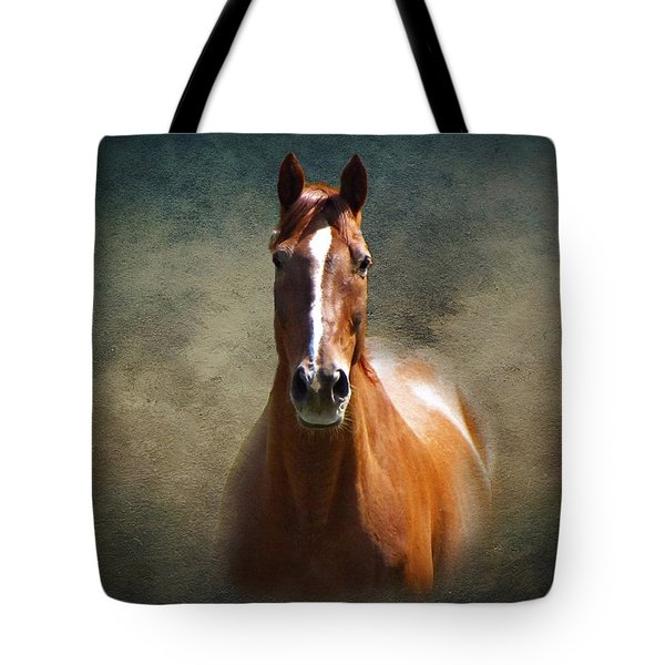 Misty In The Moonlight Tote Bag by David Dehner
