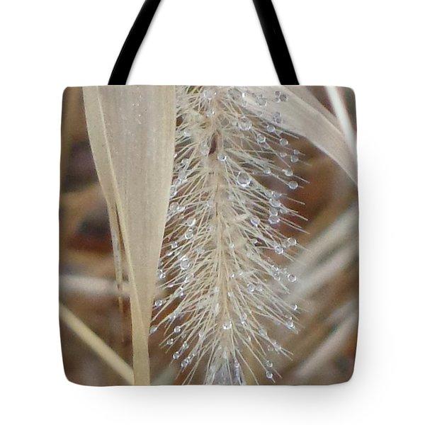 Misty Jewel Tote Bag by Christina Verdgeline