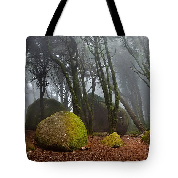Misty Tote Bag by Jorge Maia