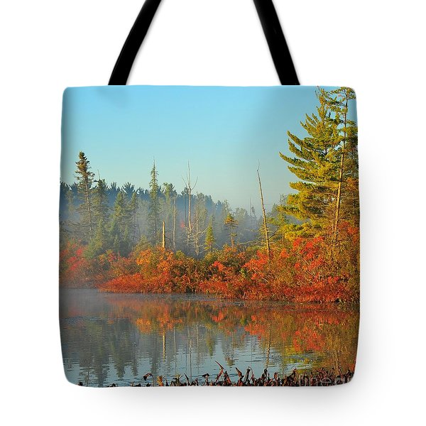 Misty Marsh Tote Bag by Terri Gostola