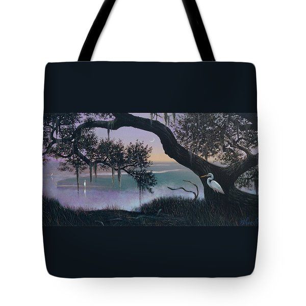 Misty Morning At Seabrook Tote Bag by Blue Sky