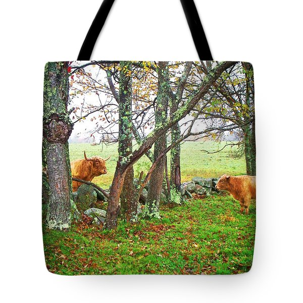 Misty Morning Conversation Tote Bag