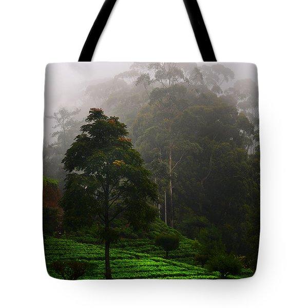 Misty Tea Plantations In Nuwara Eliya  Tote Bag by Jenny Rainbow