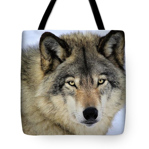 Misunderstood Tote Bag by Tony Beck