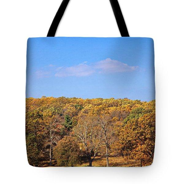 Mixed Fall Tote Bag