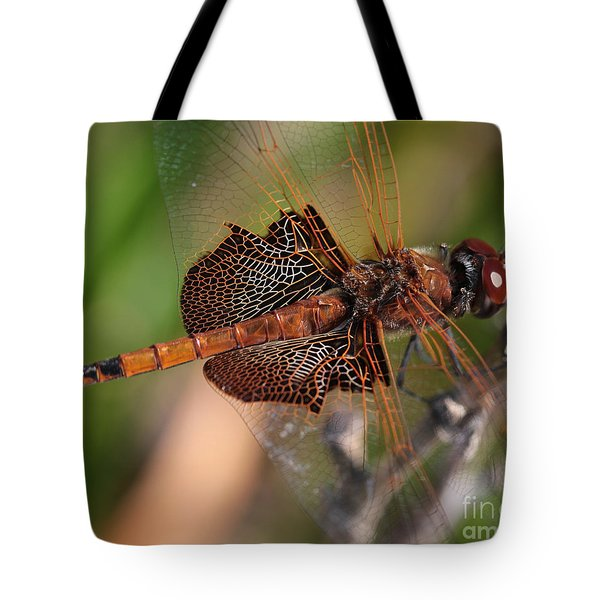 Mocha And Cream Dragonfly Profile Tote Bag by Kenny Glotfelty