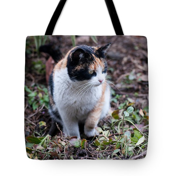 Tote Bag featuring the photograph Mochi In The Garden by Laura Melis