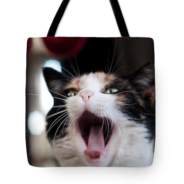 Tote Bag featuring the photograph Mochi  by Laura Melis