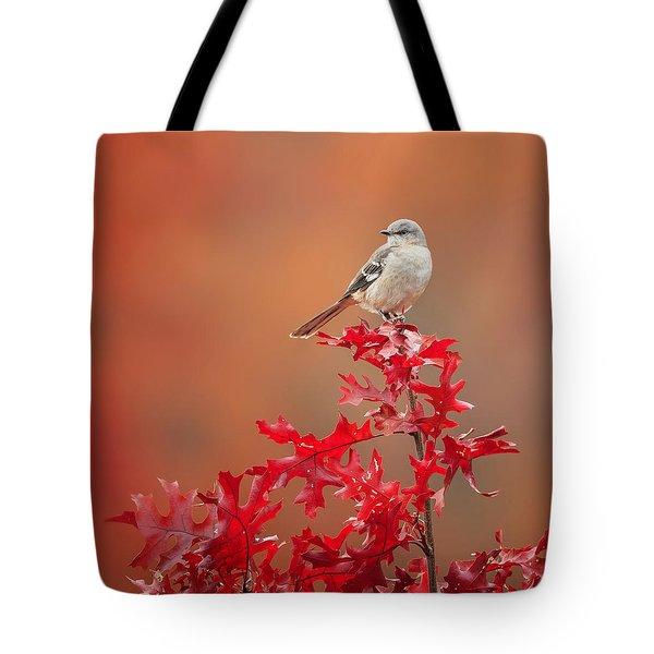 Mockingbird Autumn Square Tote Bag