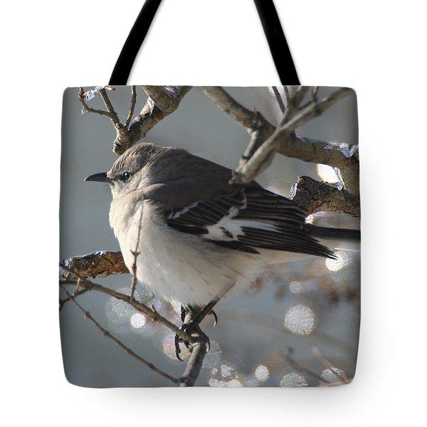 Mockingbird In Winter Tote Bag