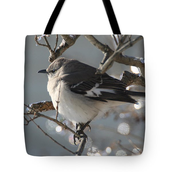 Mockingbird In Winter Tote Bag