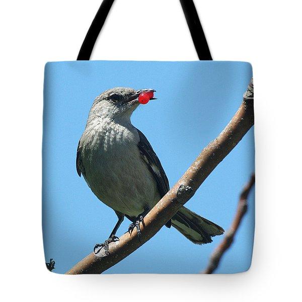 Mockingbird With Berries Tote Bag