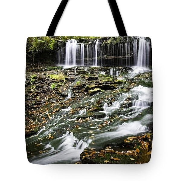 Mohawk Falls 1 Tote Bag