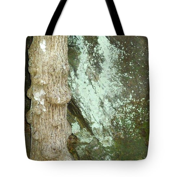 Tote Bag featuring the photograph Mold On Rock by Pete Trenholm