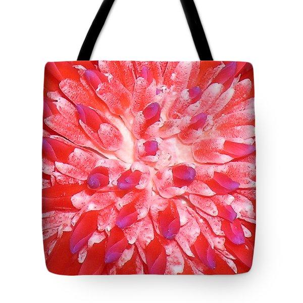 Molokai Bromeliad Tote Bag by James Temple