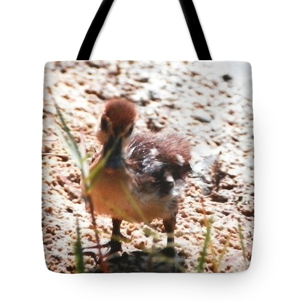 Tote Bag featuring the photograph Duckling Searching by Belinda Lee