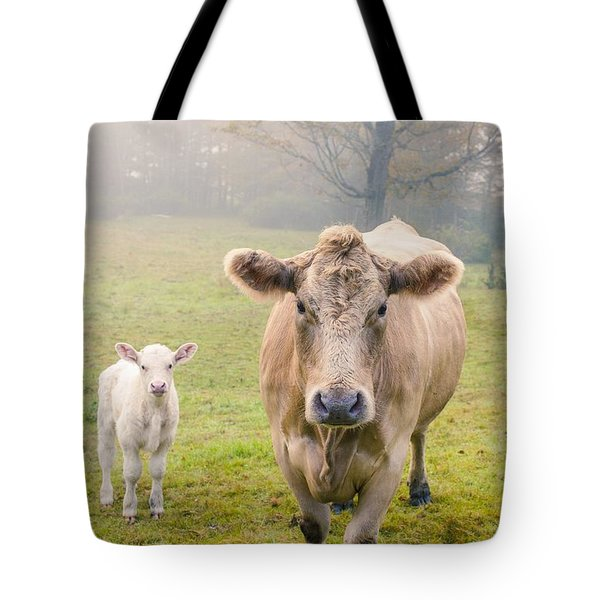 Momma And Baby Cow Tote Bag