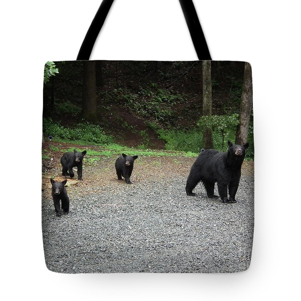 Momma And Three Bears Tote Bag by Jan Dappen
