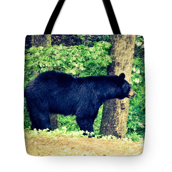 Momma Bear Tote Bag by Jan Dappen