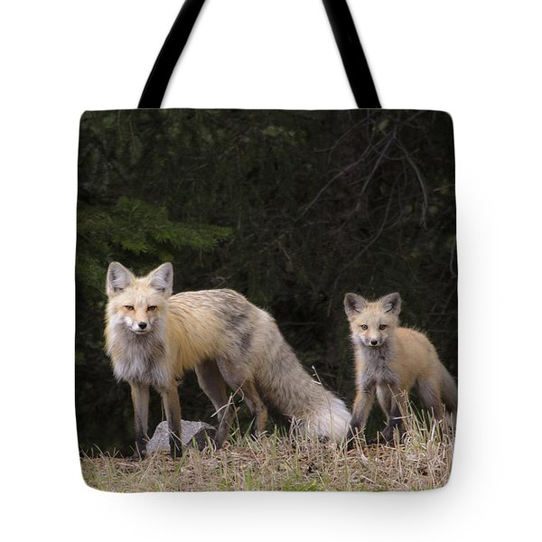 Momma Fox With Her Kit Tote Bag