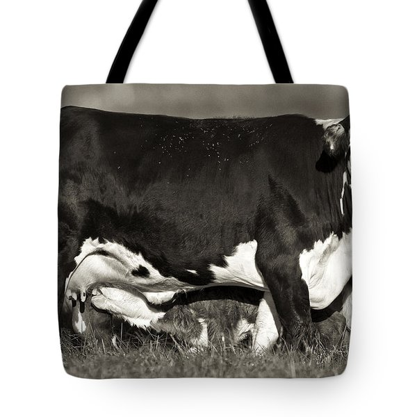 Momma Tote Bag by Patrick M Lynch