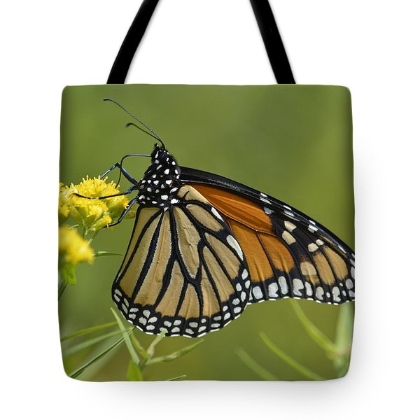 Monarch 2014 Tote Bag